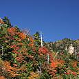 金精トンネル付近の紅葉