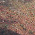 南月山から眺めた茶臼岳南面の紅葉