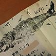 昭和52年に釣った鬼怒川のサイ(ニゴイ)