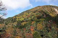金精峠から温泉ケ岳を望む