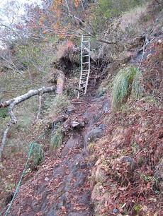 金精山斜面の登山道のハシゴ