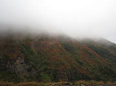 ガスがかかった朝日岳南面の紅葉