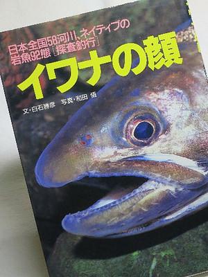 日本全国58河川、ネイティブの岩魚92態[探査釣行] イワナの顔
