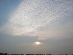 早朝の鬼怒川(宇都宮地区)