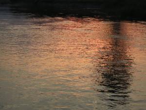 夕陽が水面に映って赤く輝く鬼怒川の水面