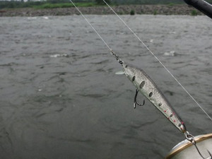 増水中の鬼怒川本流