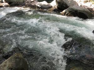 鬼怒川上流部の渓流(川俣地区)