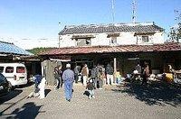 りんご狩り(栃木県矢板市長井、渡辺りんご園)