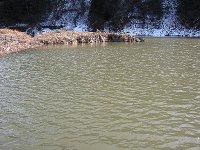 東古屋湖(2006,12,31)