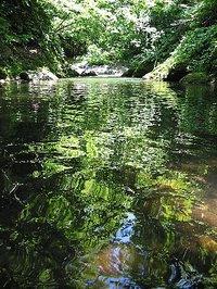 早田川(山形県朝日村)