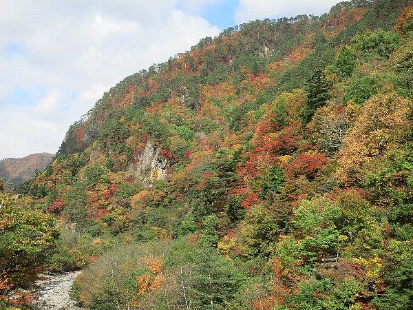 野門トンネル付近の紅葉