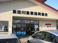 泉田川漁協の鮭直売所