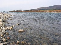荒川・2番ポイント(2007/12/8)