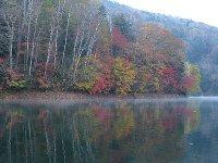 丸沼の紅葉