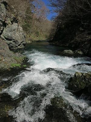 鬼怒川上流の渓流