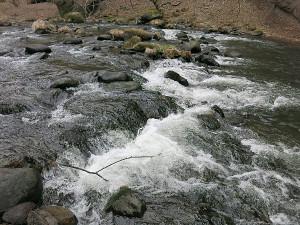 鬼怒川水系の渓流