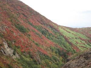 那須朝日岳南面の紅葉