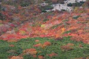 那須茶臼岳・姥ケ平の紅葉