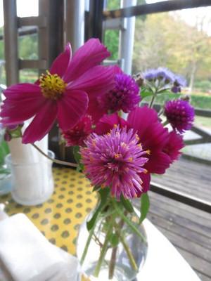 花農場あわの・テーブルの上の花