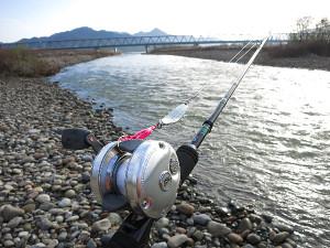 2015年新潟県荒川サケ資源有効利用調査(2015/12/12)