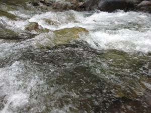 鬼怒川上流の渓流(川俣地区)