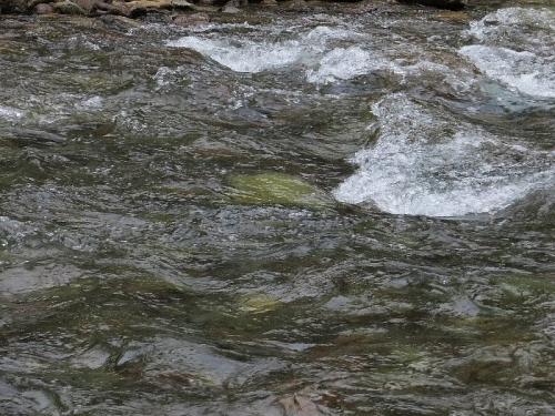 川俣地区の渓流
